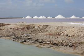 Bonaire salt pans.